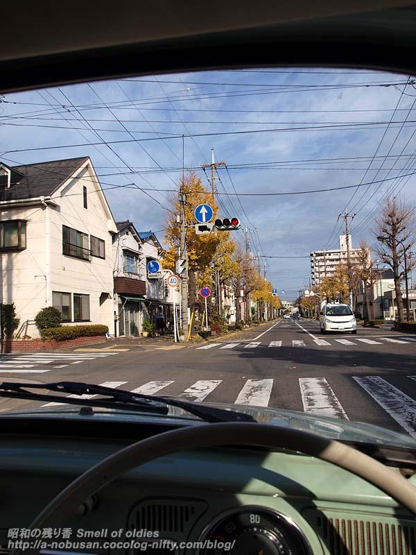 Pc134834_icho