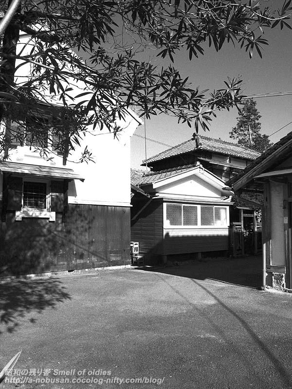 P1020471_nishiokajyozo