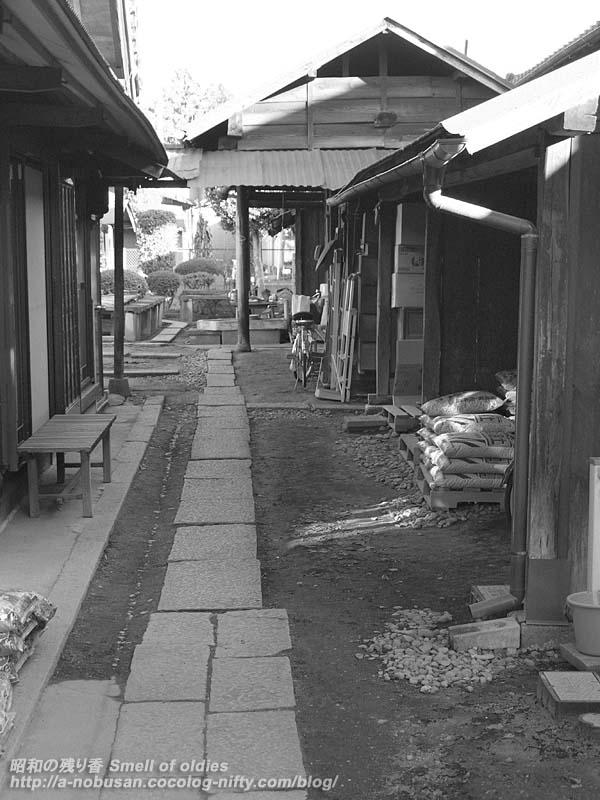 P1020764_murata