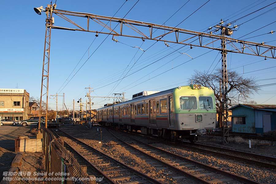 P1090321_jyoden_lightgreen