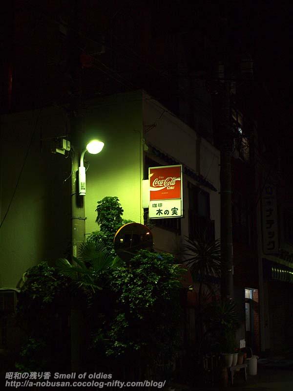P1140593_kinomi