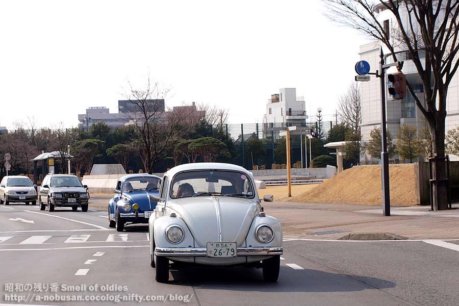 P1310027_bugs_kenchomae