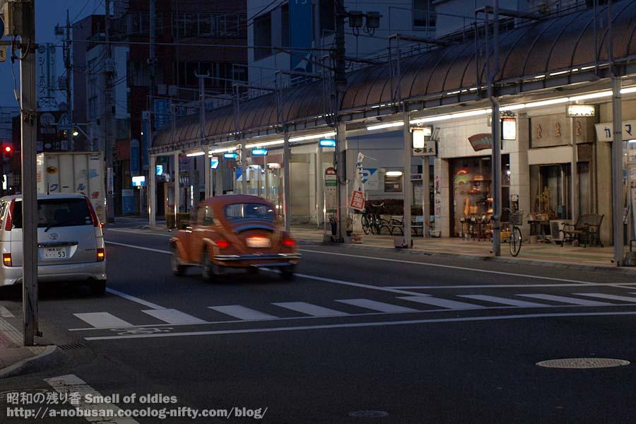 P1310221_nightbug