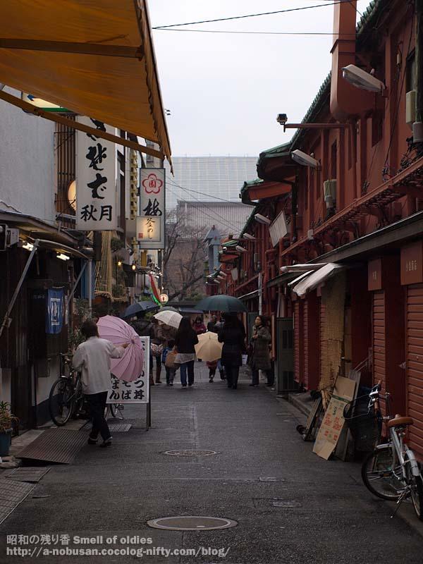 P2110017_nakamiseura