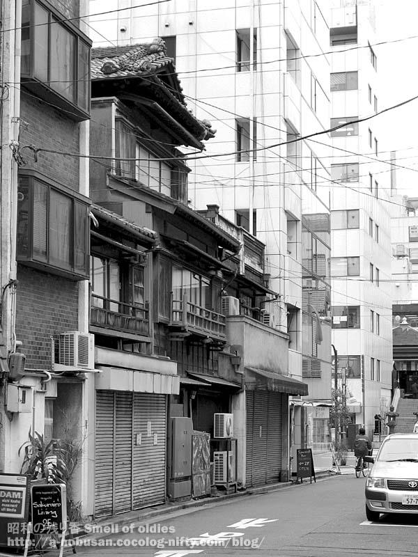 P2160393_mokuzosangai