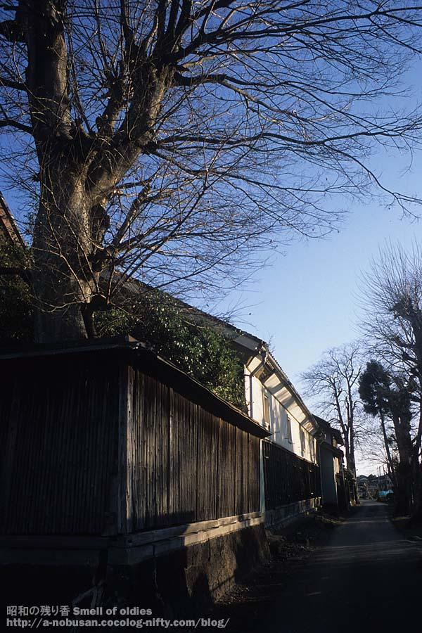 2008122820090117_r_15_maruyama