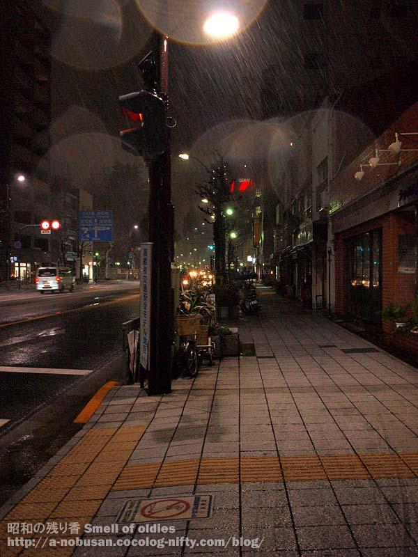 P3090078_snowy