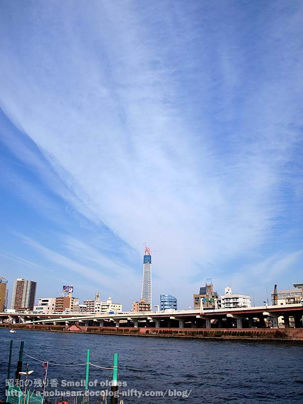 P3270184_sumidagawa