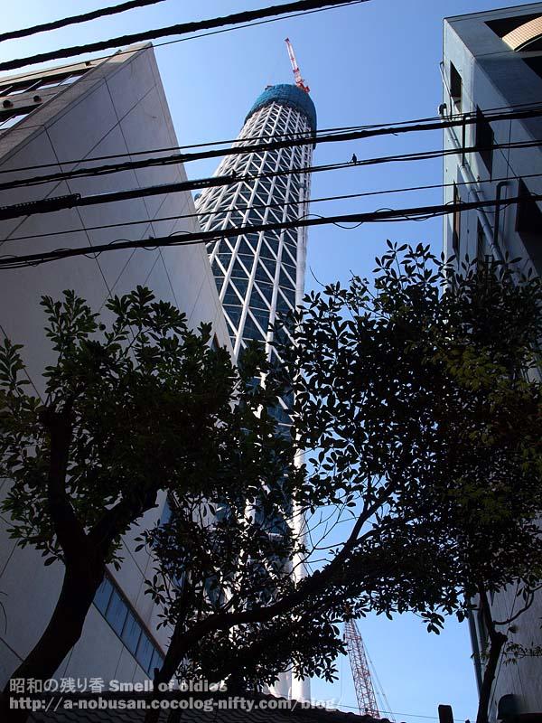 P3300460_rojiura_skytree