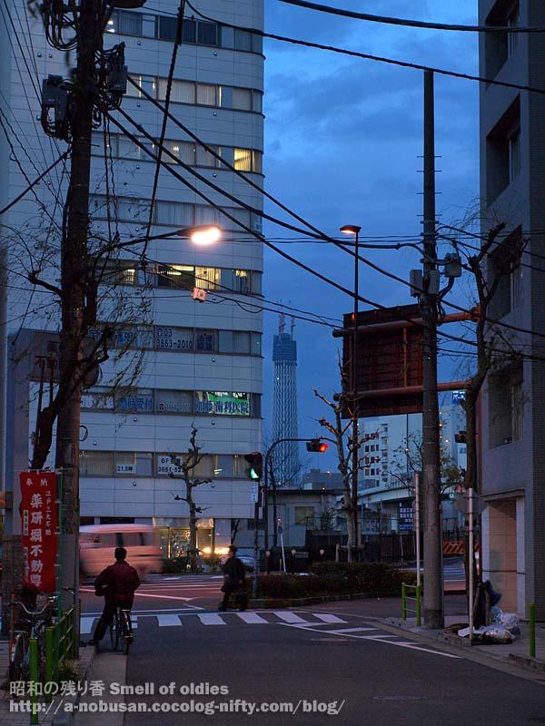 P4010232_ryougokubashi_tree
