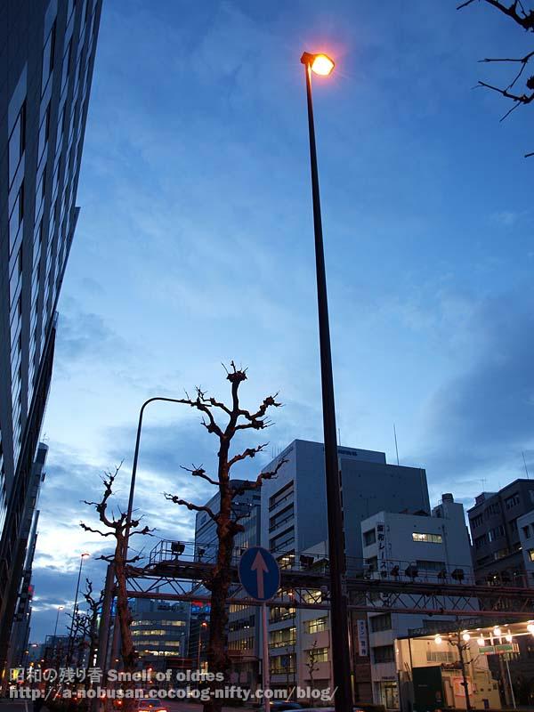 P4010237_ypgokubashi