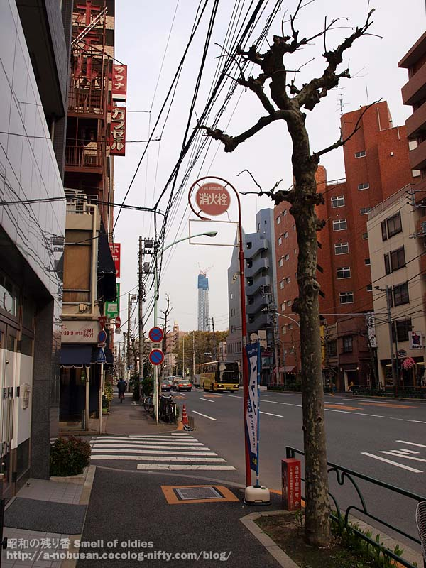 P4090324_syoukasen