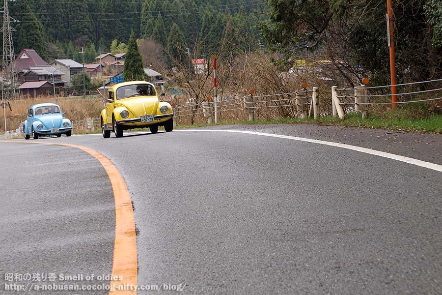 P4110564_sabakaido_77_bug