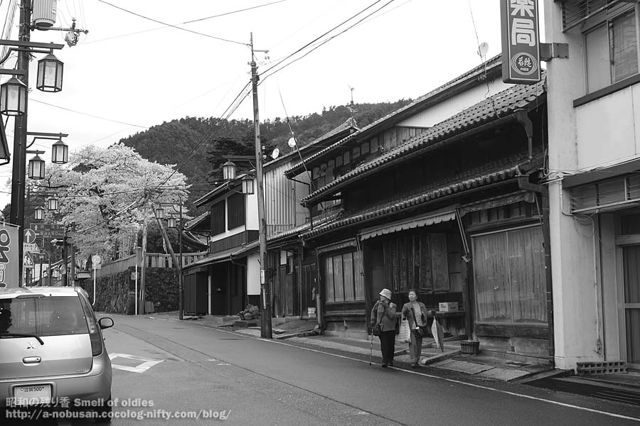 P4120433_kinomotohonjin