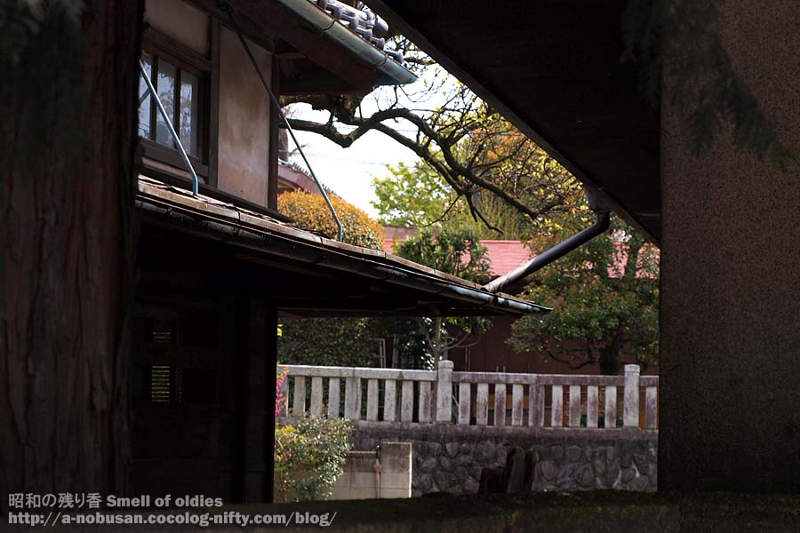 P4180047_hachimansama