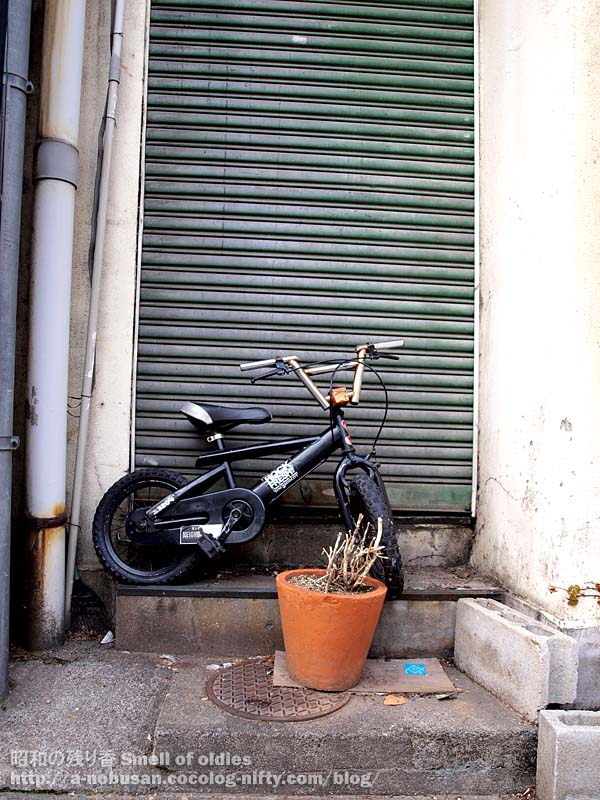 P4180175_bycicle