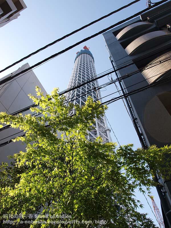 P4290522_kaede_skytree