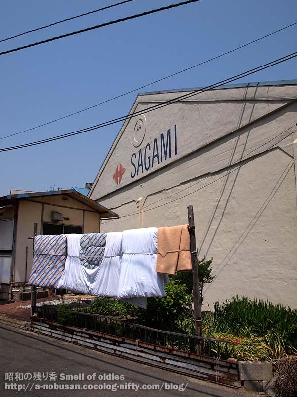 P5050220_sagami
