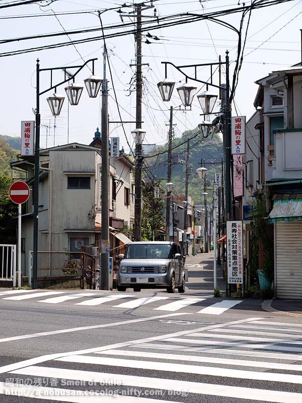 P5050735_taurano_syotengai