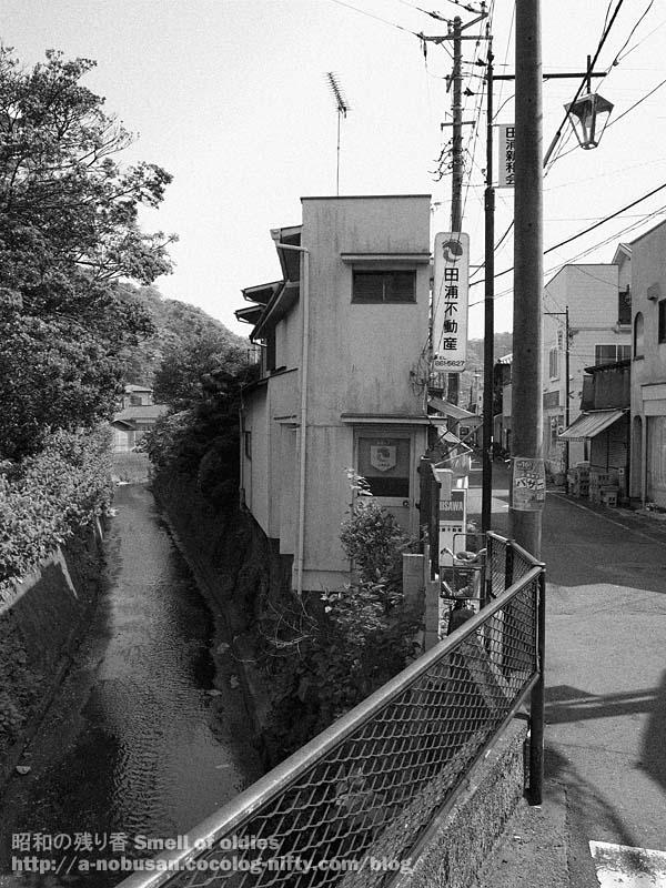 P5050754_sankaku