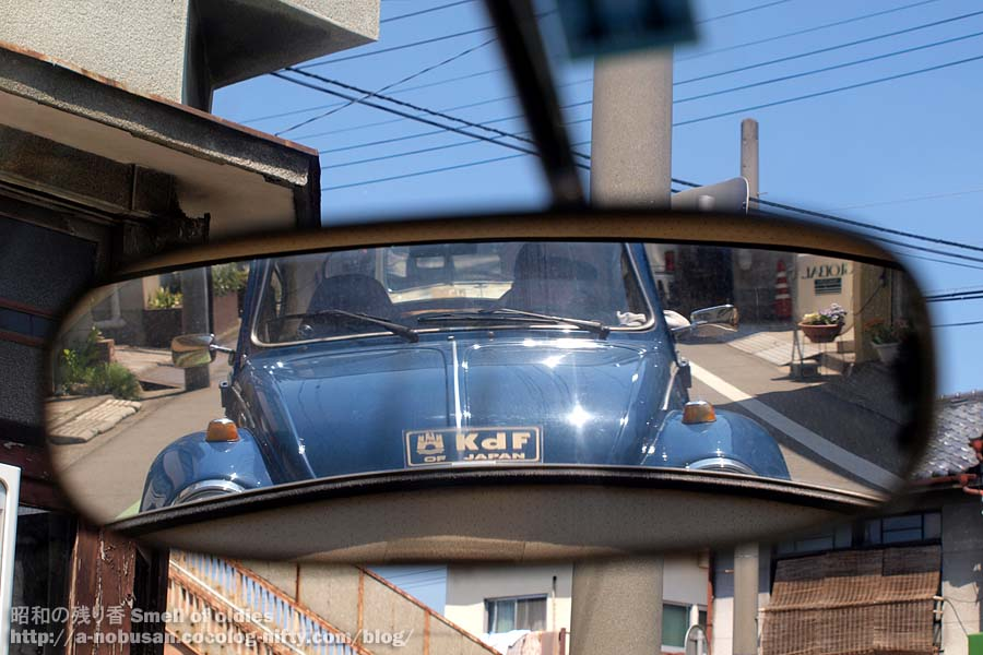 P4250027_beetle_in_mirror