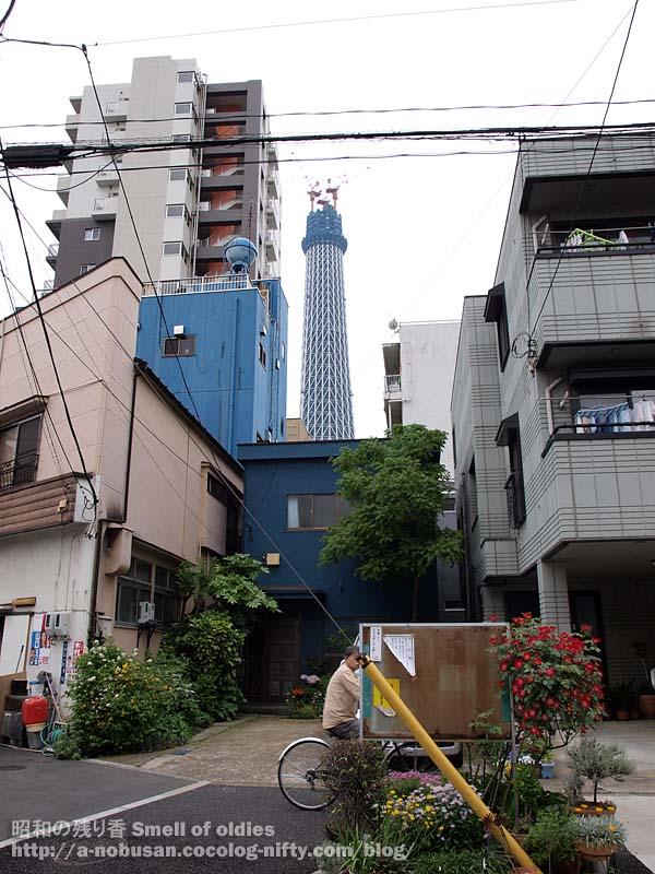 P5100414_shitamachi_oshiage