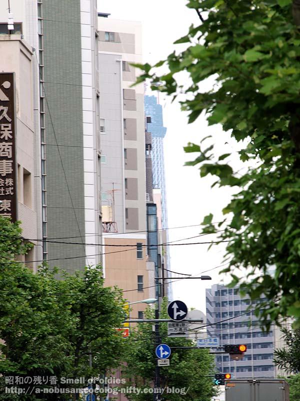P5120034_kuboshoji