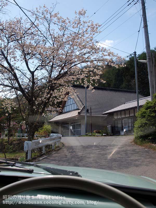 P5160028_neri_syukuba