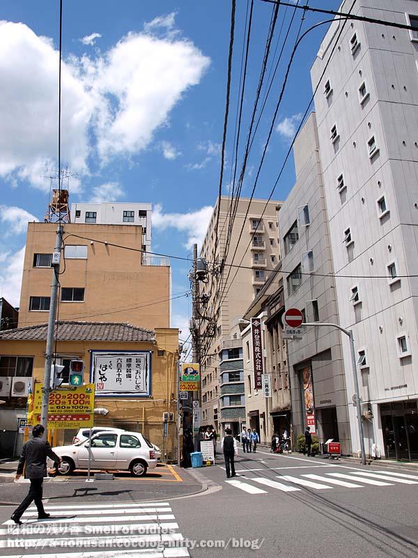 P5140097_tomizawacho