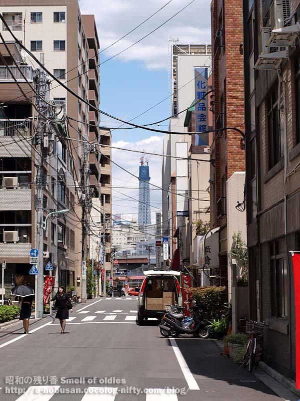 P5140123_cyuka_miyoshi