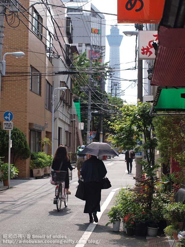 P6110468_skytree_nishiasakusa