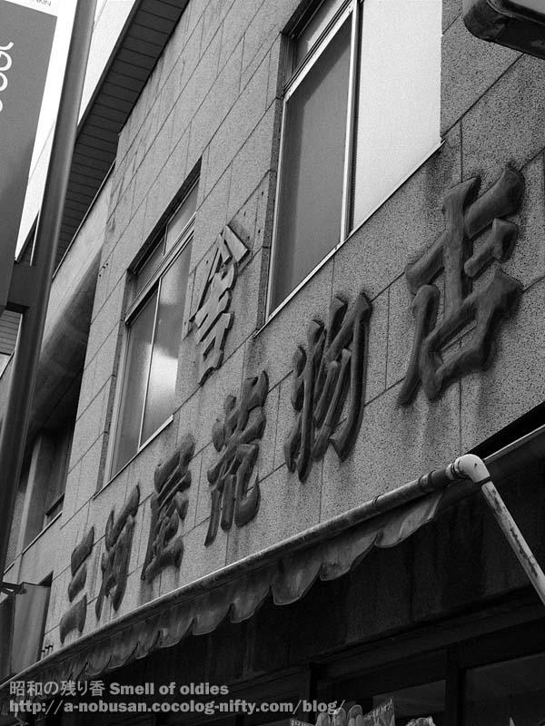 P6130284_mikawaya