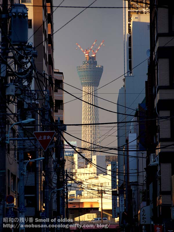 P6160424_skytree_street_sunset
