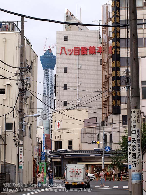 P6210135_yatsume_skytree