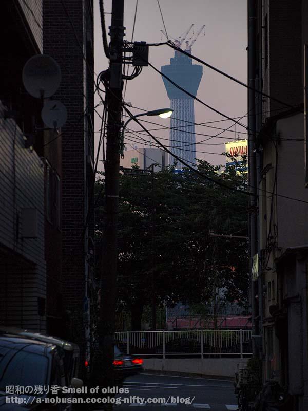 P6240578_yukoku_skytree
