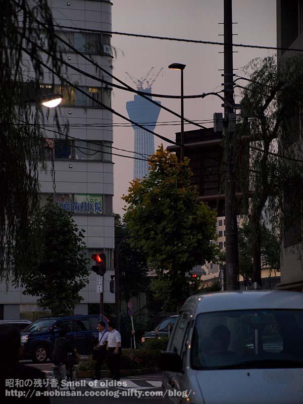P6240581_ryougokubashi