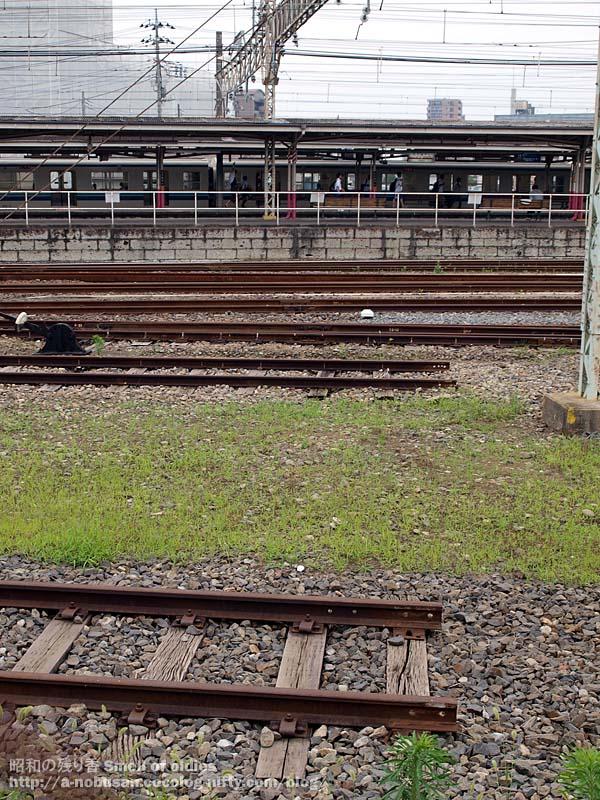 P6260177_tatebayashi_station