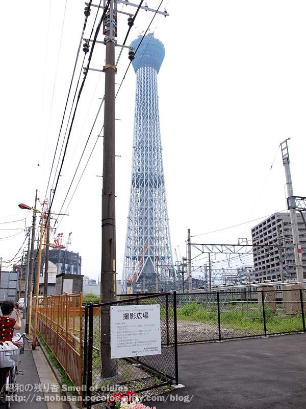 P6290269_satsueihiroba_2