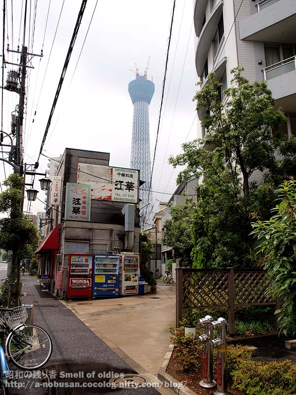 P7010208_cyukaya_skytree