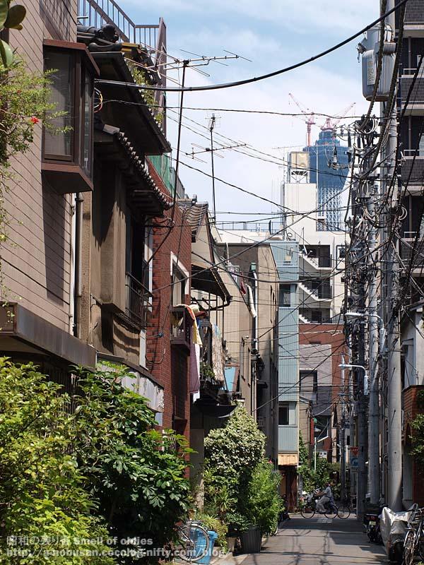 P7100279_nishiasakusa