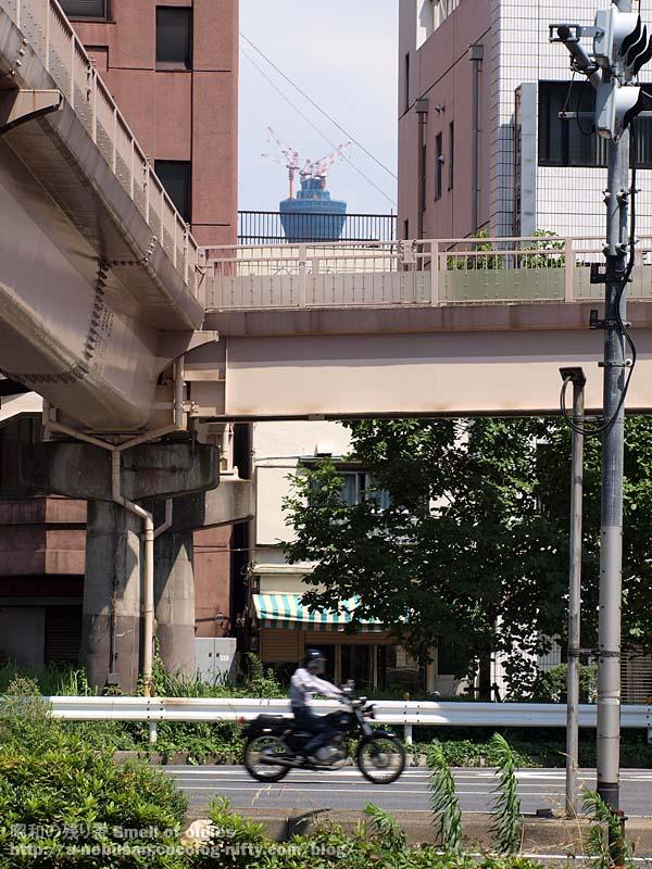 P7100385_shitaya_hodokyo