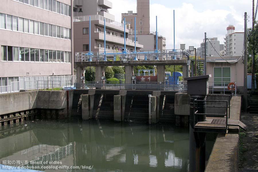 2008_pa090203_koumebashi