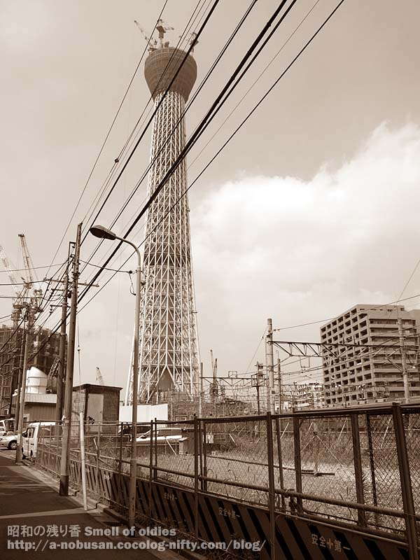 P7220562_skytree_and_small_tree