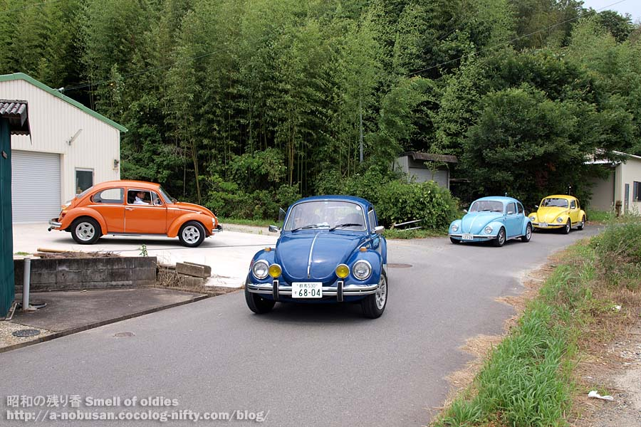 P7310273_4vw_beetles