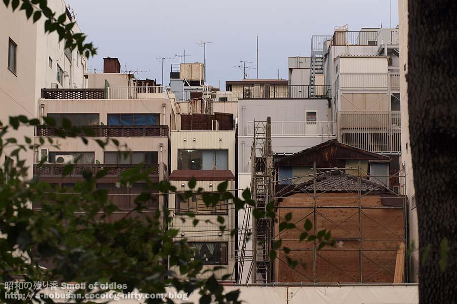 P7290028_bakurocho