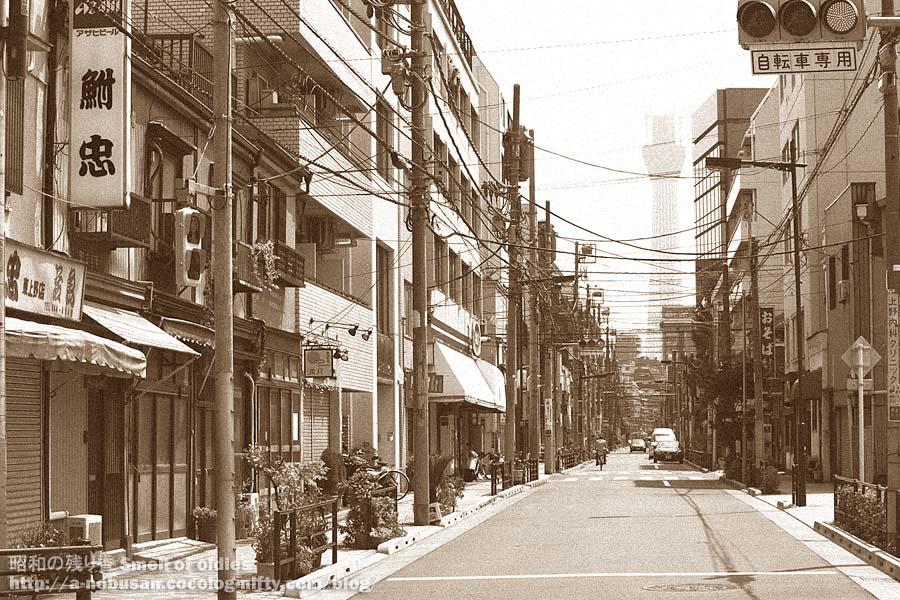 P8150182_higashi_ueno