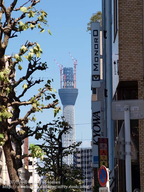 P9010722_higashinihonbashi_skytree