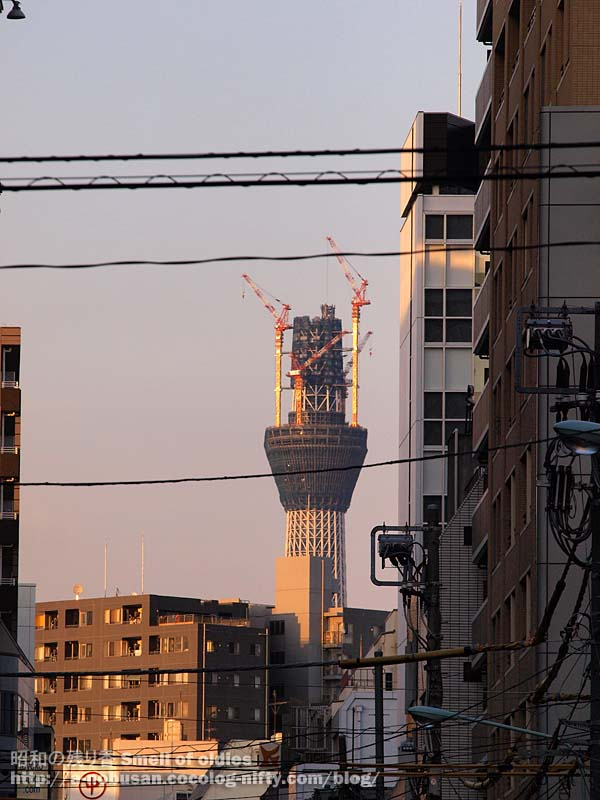 P9010822_sunset_skytree