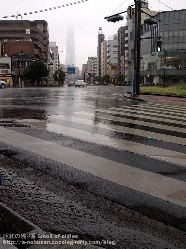 P9080379_kiyosudori_rain