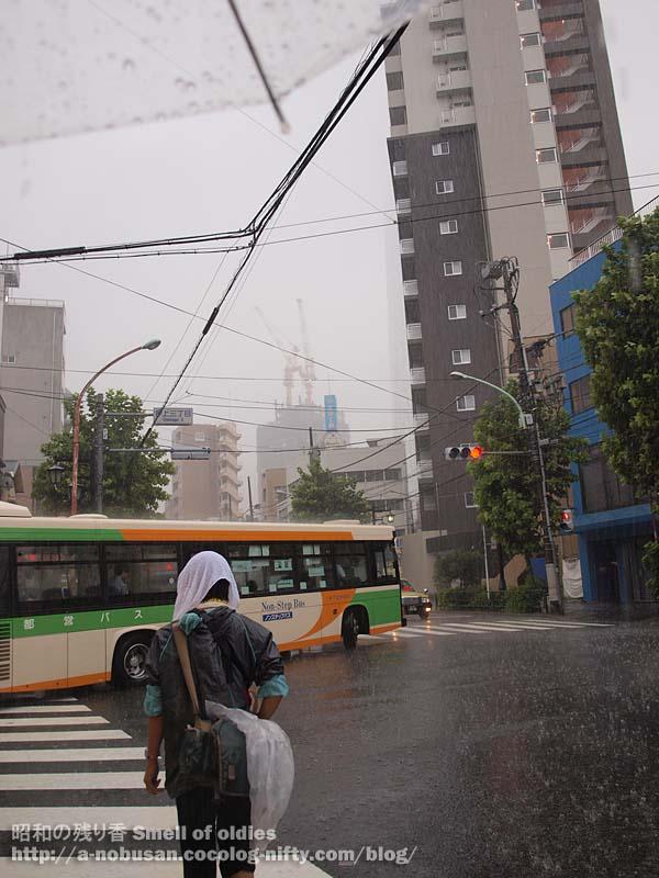 P9080542_oshiage_taifuu